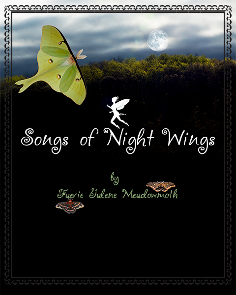 Songs of Night Wings
